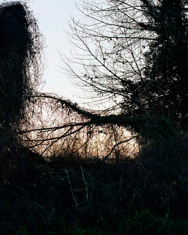 Regarder la Seine - Paysages